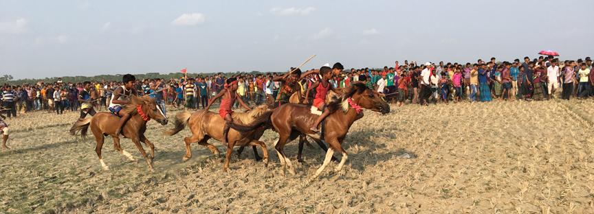 কালিগঞ্জের নেঙ্গীর বিলে ঘোড় দৌড় প্রতিযোগিতা