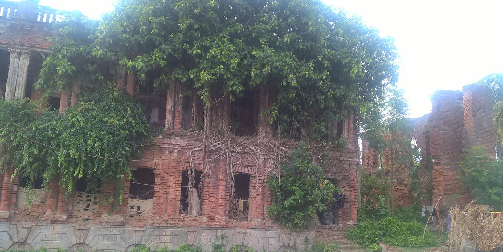 ক্যাপশন নিউজ: নকীপুরের রায়বাহাদুর হরিচরণ রায় চৌধুরী