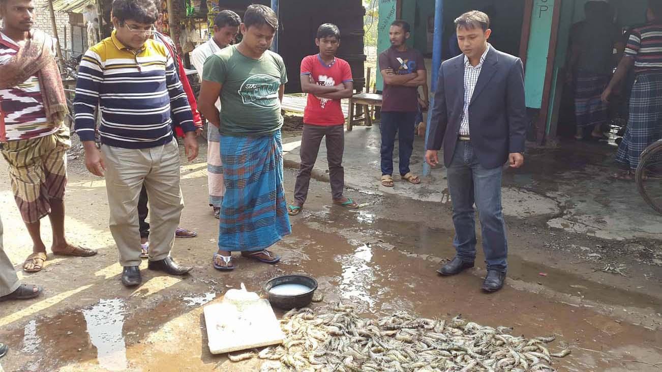 কালিগঞ্জে পুশ বিরোধী অভিযানে ৫০ কেজি বাগদা বিনষ্ট: ৬ হাজার টাকা জরিমানা