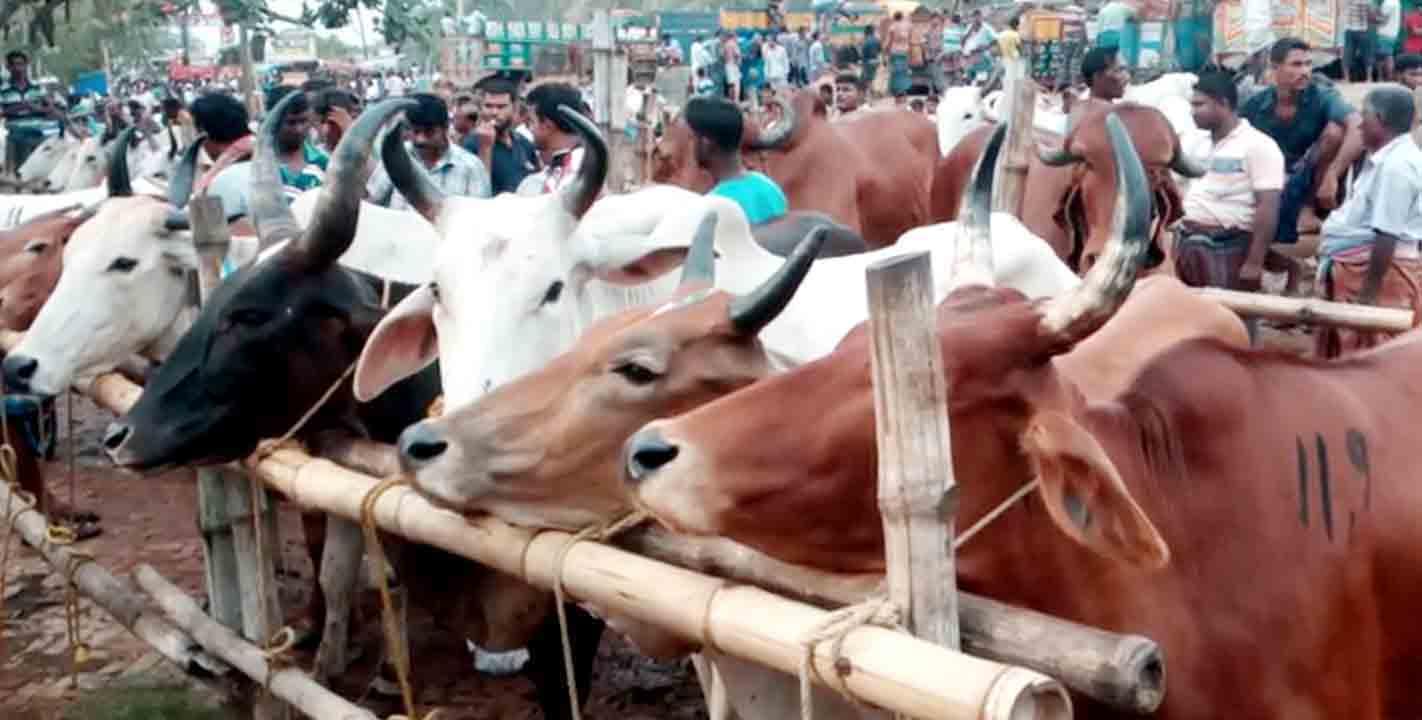 কোরবানির ঈদ: শো শো ও খট খট শব্দে মুখরিত বেনাপোলের কামারপাড়া