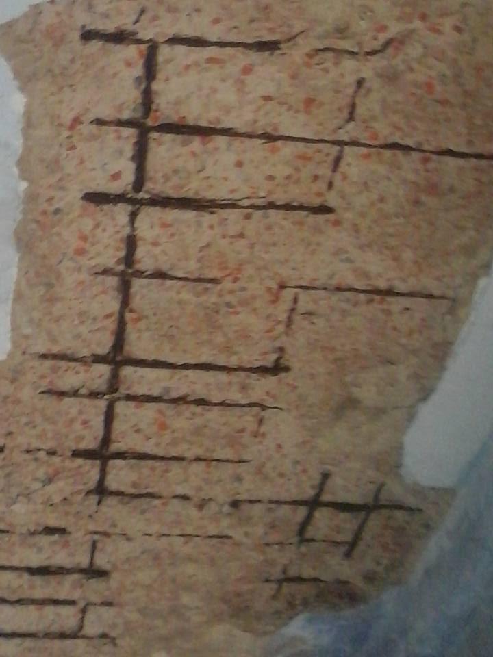 তালার কুমিরা পাইলট মাধ্যমিক বালিকা বিদ্যালয়ের ছাদ ধসে পড়ায় উদ্বিগ্ন অভিভাবক মহল
