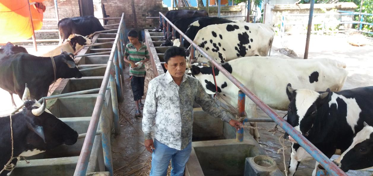 নকল দুধে সয়লাব জেলার দুগ্ধ পল্লী