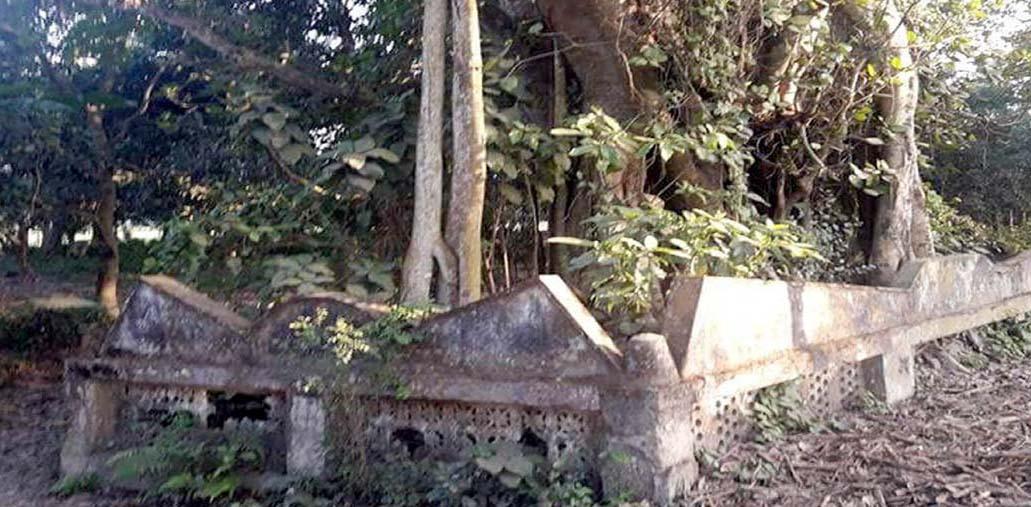 যুদ্ধে শহীদ হয়ে গণকবরে শায়িত থেকেও মুক্তিযোদ্ধার স্বীকৃতি পাননি কলারোয়ার মতিয়ার রহমান