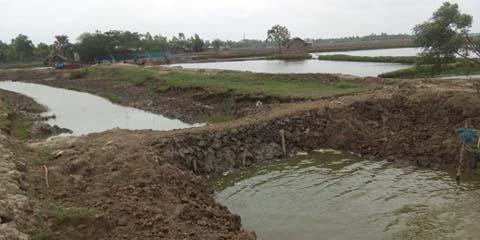 শ্যামনগরে সরকারি ফেশাখালী খালে অবৈধভাবে বাঁধ নির্মাণ: পানি চলাচল বন্ধ