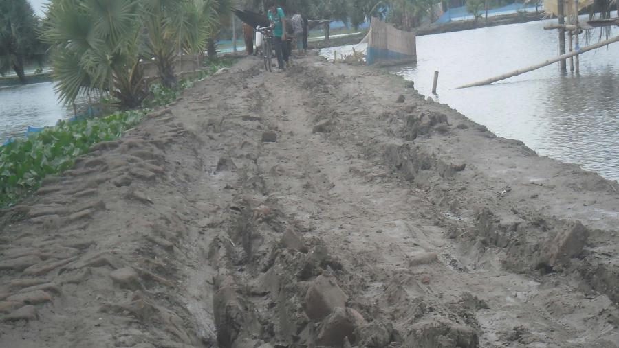 তালার হাজরাকাটি-কাটবুনিয়া রাস্তার বেহাল দশা