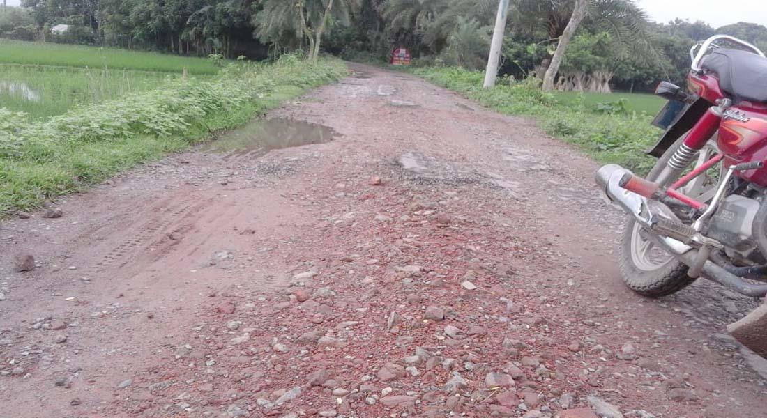 কলারোয়ার কেঁড়াগাছির গাড়াখালি থেকে তলুইগাছা ক্যাম্প পর্যন্ত সড়কটির সংস্কার জরুরী