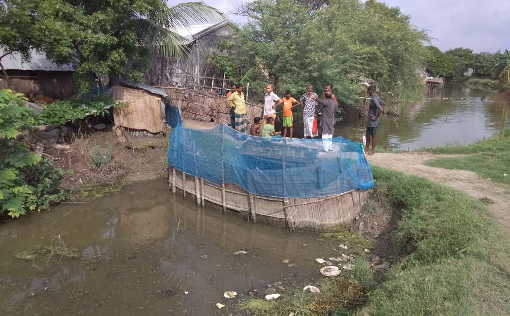 বিনেরপোতা শালিখা নদী হত্যা করে মাছ চাষ
