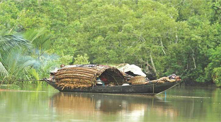সুন্দরবনে মাহমুদা নদী সংলগ্ন এলাকা থেকে ৪ জেলে আটক